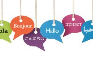 ¿Cuál es el campo laboral para un/a licenciado en lenguas extranjeras?